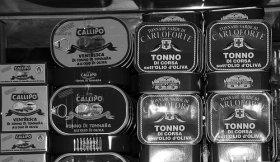 Ricette piatti unici: polpettone di tonno per grandi e piccini