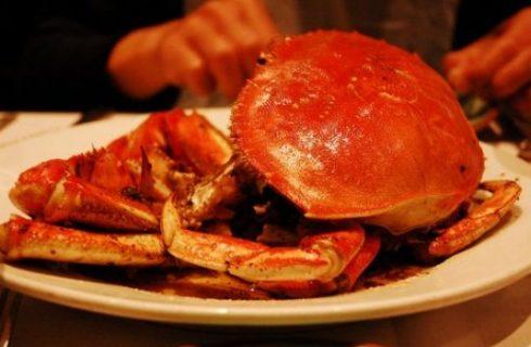 Piatti e curiosità: cucinare alla cardinale