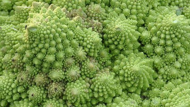 Festa del papà: ricetta del plum cake con broccoli e pecorino