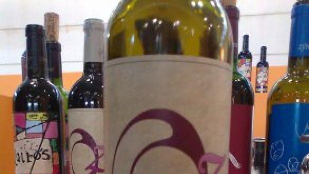 Vitigni & Vini: L'Oseleta