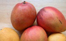 Ricette Pasqua: l'insalata sfiziosa di mango e carote con mozzarella di bufala