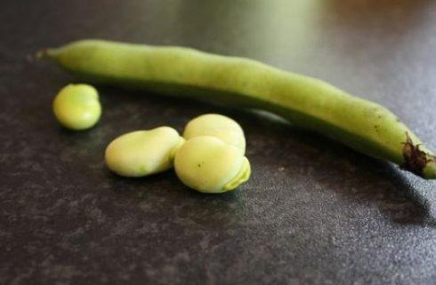 Ricette antipasti: l'insalata speziata di fave