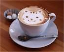 Caffè con schiuma…felina!