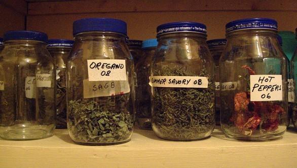 Usare il microonde per seccare in casa le erbe aromatiche