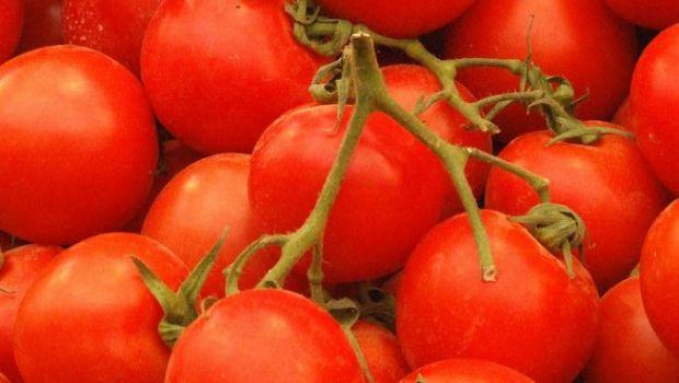 Ricette d'estate: il sorbetto al pomodoro