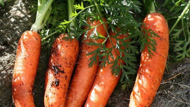 La top ten Coldiretti della frutta e verdura che abbronza e protegge dall'afa