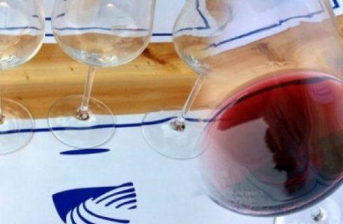 Carignano del Sulcis: il vitigno a piede franco del sud-ovest sardo