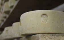 Il formaggio più antico del mondo? Ha 7000 anni