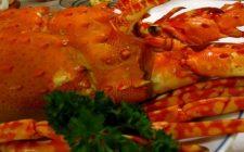 Aragosta low cost: la ricetta originale del Maine