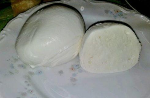Falsa mozzarella di bufala lombarda sequestrata in un caseificio milanese