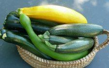 Zucchine in carpione per un contorno perfetto con gli arrosti