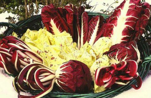 Come fare il radicchio in padella sfumato al vino rosso