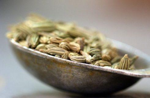 La tisana ai semi di finocchio per un perfetto digestivo