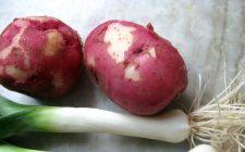 Teglia di porri e patate al forno per un contorno salutare