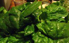 La ricetta degli spinaci al vapore con cipolla in agrodolce