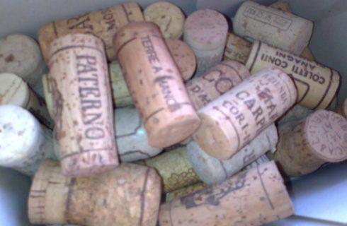 Quali sono le alterazioni, i difetti e le malattie del vino