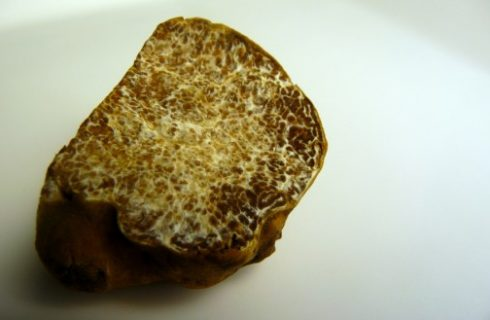 Ecco i tagliolini al tartufo con la ricetta semplice