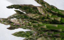 Il rotolo di frittata con asparagi per un delizioso secondo piatto
