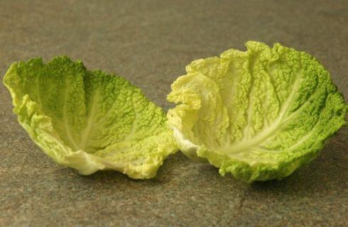 La ricetta dei fagottini di verza vegetariani