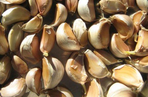 Cos'è l'aglio in camicia e quando si usa nelle ricette?