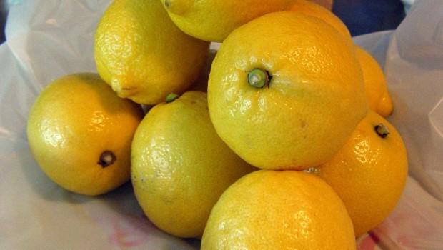 La crema di limoncello, la ricetta originale e i consigli di conservazione