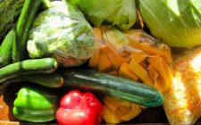 Frutta e verdura di stagione di luglio e agosto, ecco cosa comprare