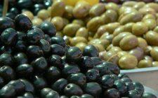 La ricetta delle olive taggiasche sott'olio, la conserva casalinga