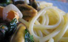 La pasta con le cozze e il pecorino per un insolito menù estivo