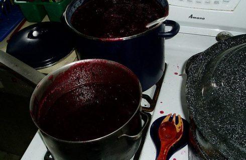 Il budino al mosto d'uva, ecco la ricetta facile