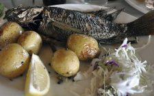 Come fare il pesce San Pietro alla griglia
