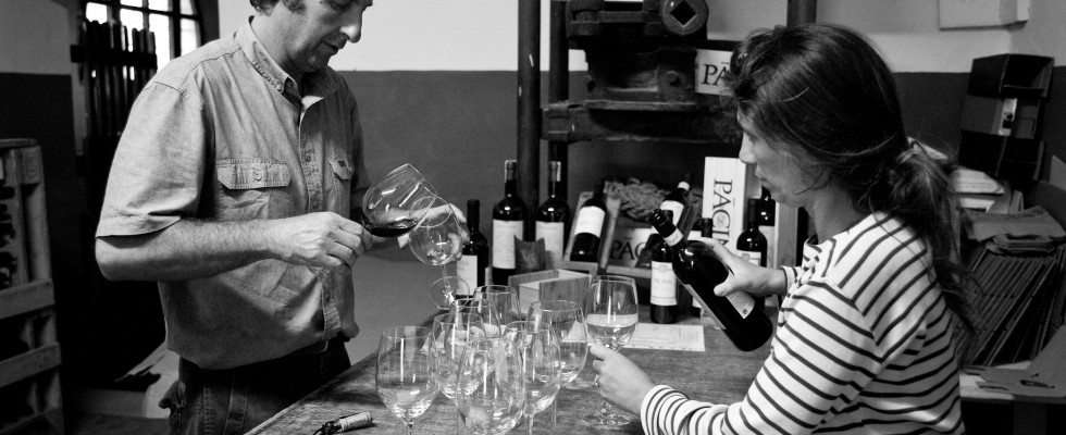 Giovanna e il vino: benvenuti a Pacina