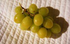 Ecco il risotto all'uva per gustare la frutta autunnale