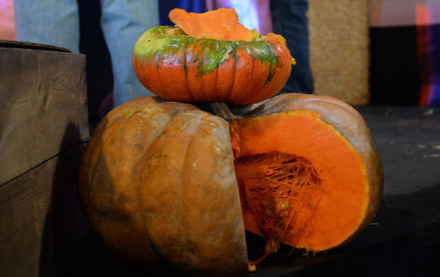 La zucca: le proprietà nutrizionali e le varietà dell'ortaggio tipico di ottobre