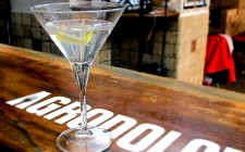 Vodka Martini in&out