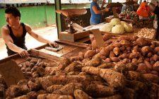 Il purè di patate dolci (o americane) e panna di cocco per un contorno vegano