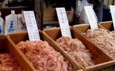 Sapori giapponesi: il katsuobushi