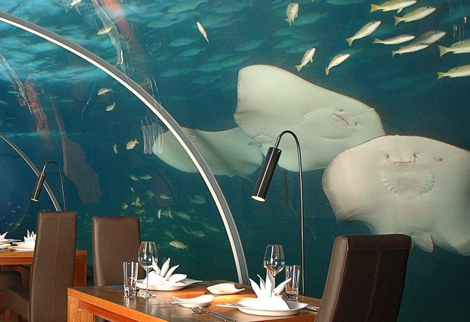 I ristoranti più strani del mondo - Foto 10