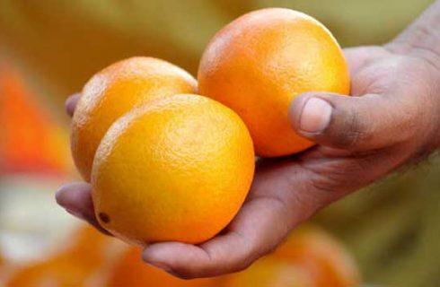 La ricetta del seitan in salsa d'arance per Natale