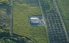 Vini à Porter: Frascati Secco