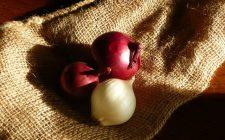 Le cipolle stufate con aceto balsamico, la ricetta facile