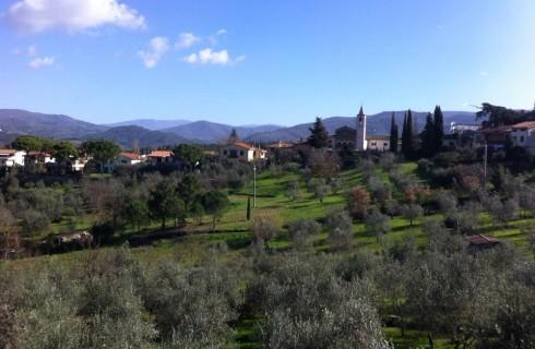 Da Padellina, Greve in Chianti