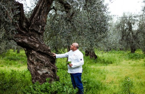 Cultural Festival: a Matera si torna alle radici