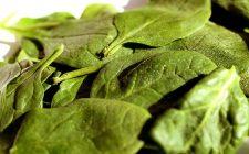 Ecco gli spinaci con besciamella da fare al forno