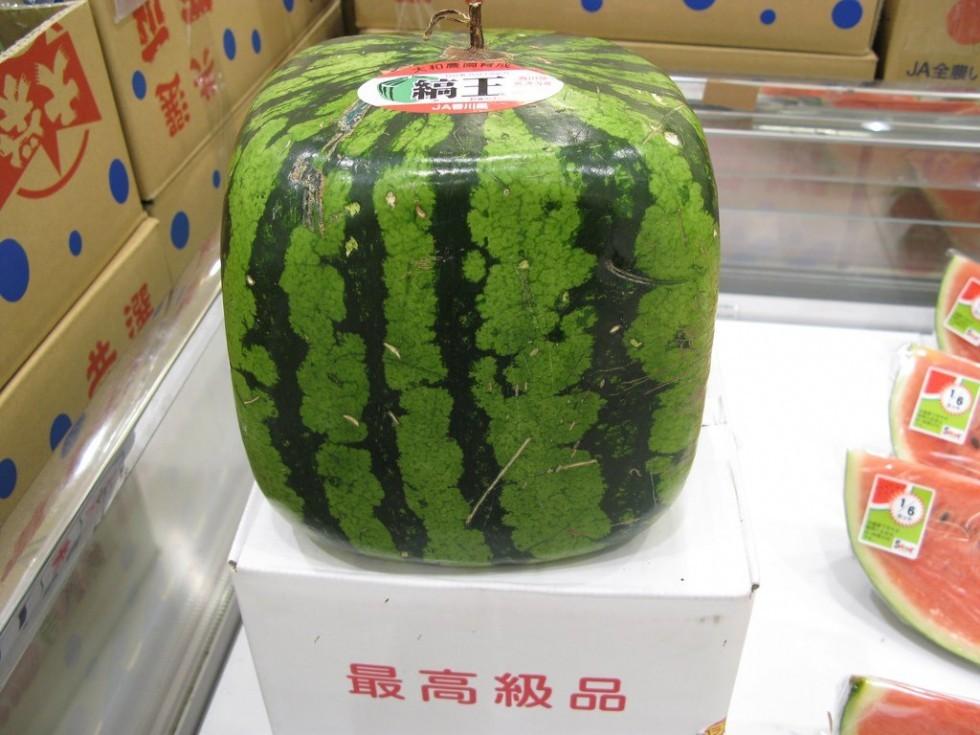 I frutti più strani del mondo - Foto 2