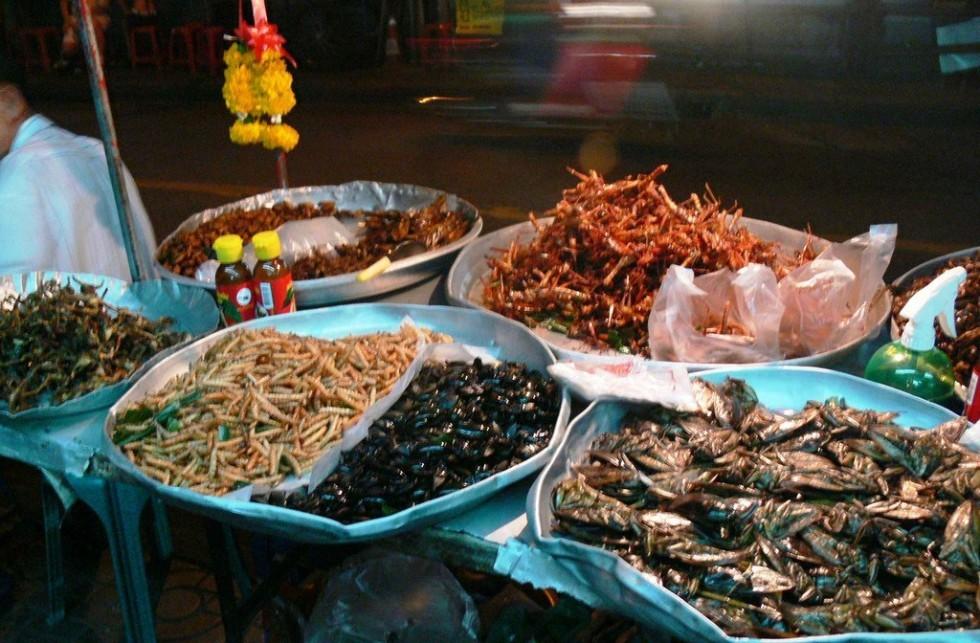 Per stomaci forti: insetti da mangiare - Foto 15