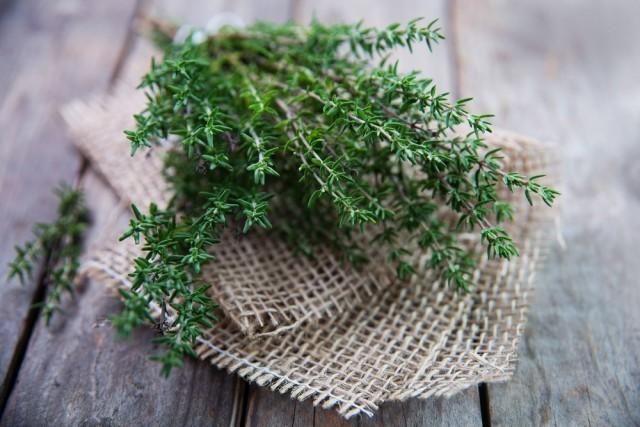 Le 13 erbe officinali da coltivare a casa agrodolce - Casa profumatissima ...