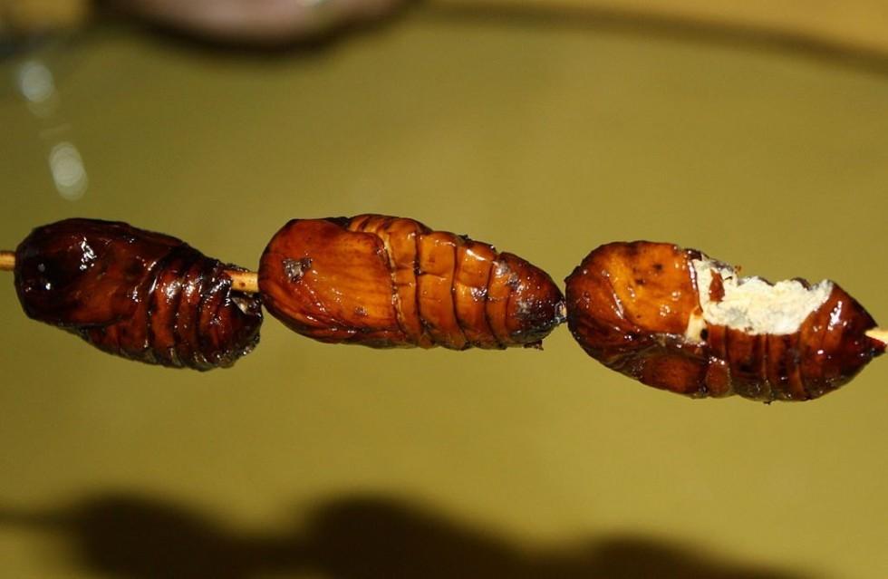 Per stomaci forti: insetti da mangiare - Foto 18