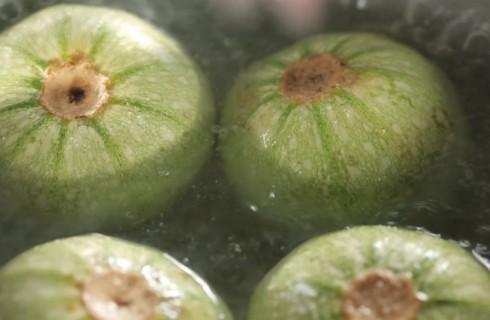 zucchine_lessate