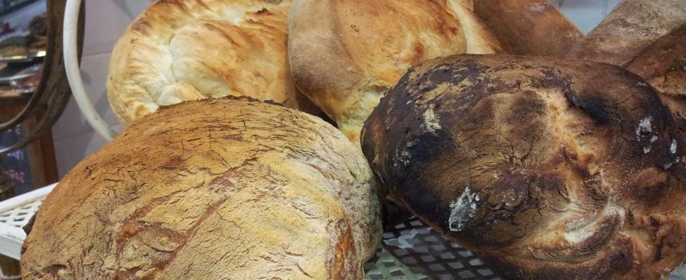 Boulangerie MP a Roma: nuovi regni della panificazione