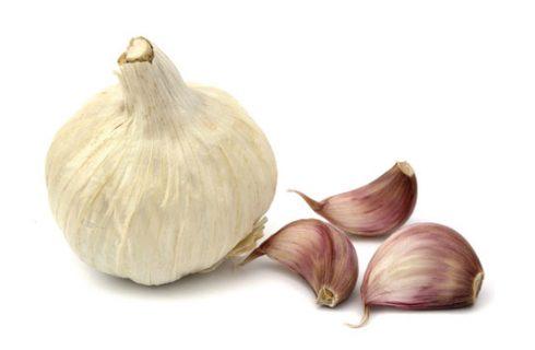 L'aglio tuttofare, il libro di Alix Lefief-Delcourt sui mille usi dell'aglio in cucina